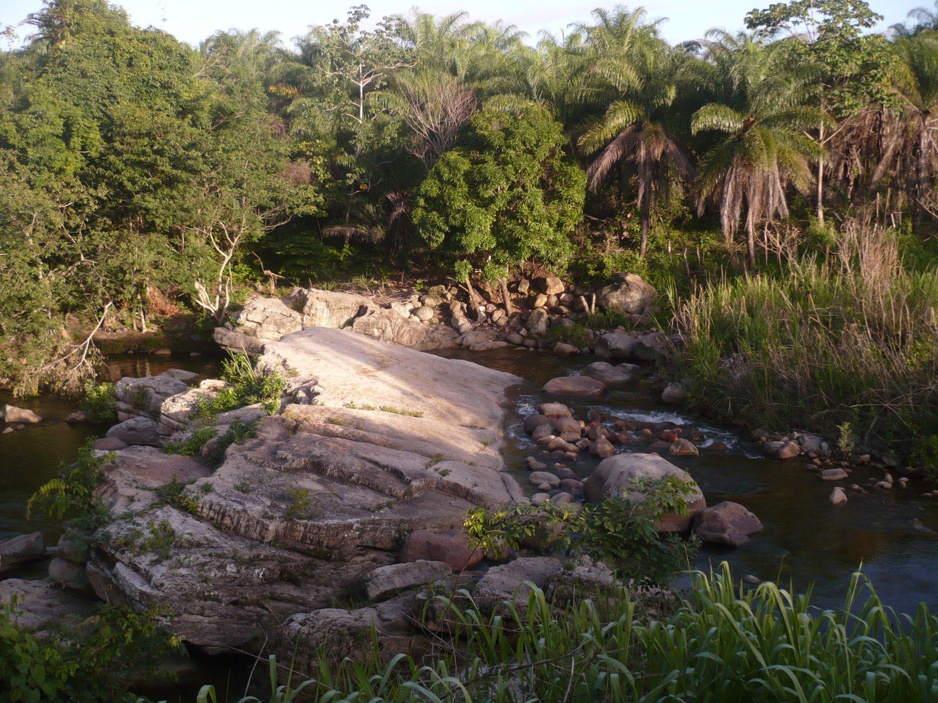 Salida de Campo de Supervivencia / Río Taguaya, Alto De San Juan, Monagas, Venezuela / Prof. Juan Francisco Peraza Marsiglia [ESP]